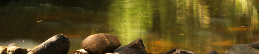Stones and water